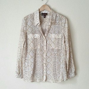 Dana Buchman Brown White Button Down Blouse